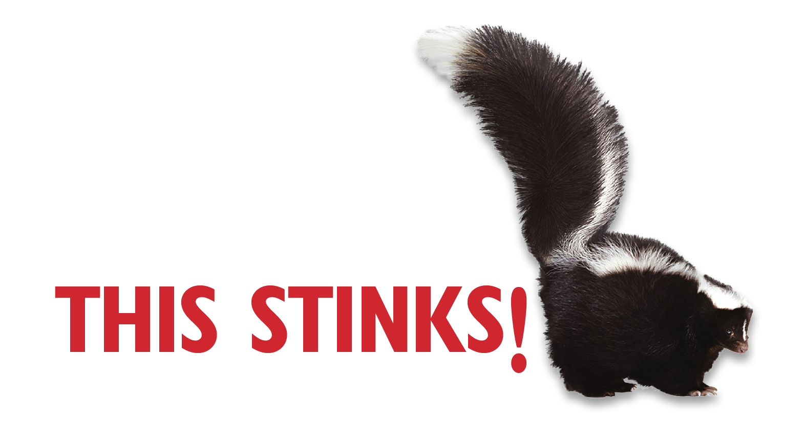 Image result for STINKS